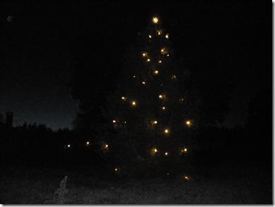 Julenen med ny belysning