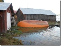 Vattnet når upp till flera båthus