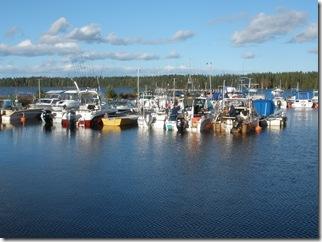 Trollingbåtarna i Olsnäs båthamn