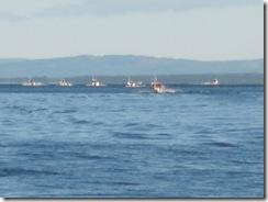 Trollkingbåtarna på väg ut på Storsiljan